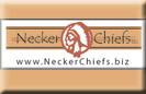 Neckerchiefs, Slides, More